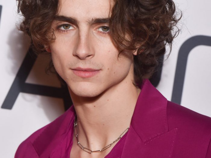 Timothee Chalamet, Connell Normal People chain necklace