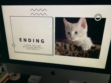 A Little Girl Made A PowerPoint Presentation To Convince Her Parents To Get Her A Cat